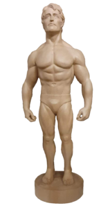 Bodybuilder aus Lindenholz geschnitzt